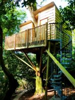 A Real Treehouse